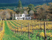 Peninsula-and-legendary-winelands-in-cape-town